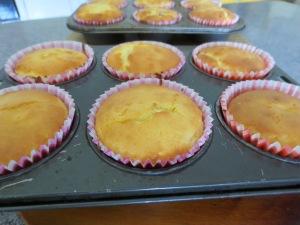 Raspberry Cupcakes Lunchbox