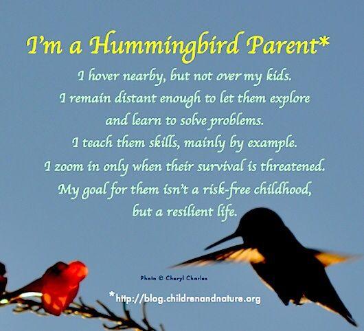 hummingbird-mum